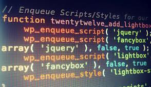 wp_enqueue_script wordpress