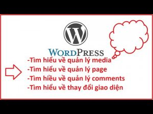 tim hieu ve media, page, comment